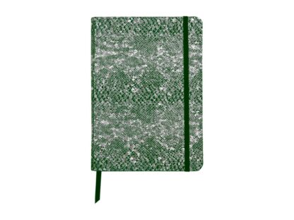 Notebook coperta moale piele, A5, 144 pagini, Clairefontaine Celeste Green laser + Silver