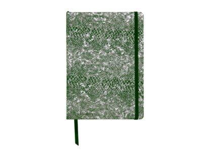 Notebook coperta tare piele, A5, 144 pagini, Clairefontaine Celeste Green laser + Silver